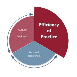 Efficiency of Practice